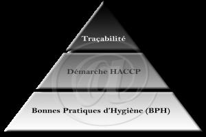 TrianglePMS